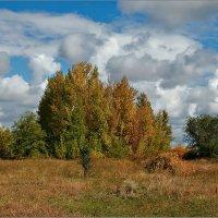 Осень :: Александр Смольников