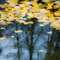 Осень в отражениях :: Алексей (АСкет) Степанов