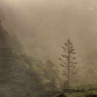 Утренний туман :: Павел Федоров