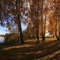 Я с осенью в ладу :: Сергей Жуков