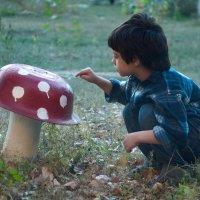 я нашел грибок! :: Дмитрий Барабанщиков