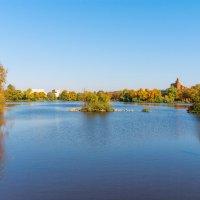 Осень на Разливе 8 :: Виталий