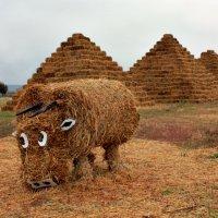 Наш бык и в Египте !!! Чудесааааа!)))) :: Клара