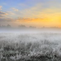 Утро седого сентября... :: Андрей Войцехов