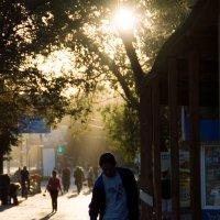 Шуршать листвой под солнца мягким светом :: DirtyIris