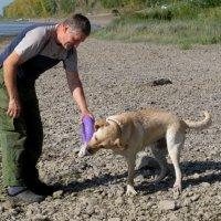 Хозяин играет со своей собакой :: Наталья Петровна Власова