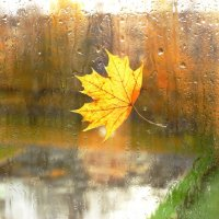 Осень рассылает телеграммы... :: Наталья Казанцева