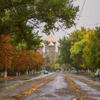 осенний дождь :: Алина Гриб