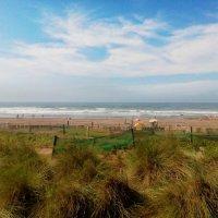 просто сентябрь,  просто пляж... :: Светлана marokkanka