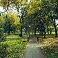 В осеннем парке 3 :: Вячеслав Баширов