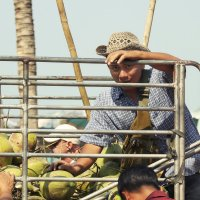 Продавец кокосов. Из серии-Лица. :: Сергей Калиновский