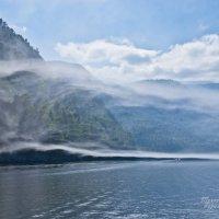 Уходим в туман. :: Константин Лавренчук