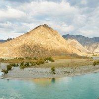 Малый-Яломан на реке Катунь :: Николай Мальцев