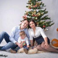 Семейный праздник Рождество :: Yelena LUCHitskaya