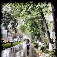 Дождь в городе :: Albina