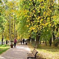 Когда наступает золотая осень.. :: Елена Семигина