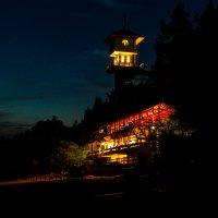 Ночная жизнь :: Маруся Шитова