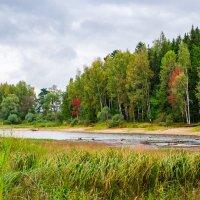 Осенние берега .Продолжение. :: Андрей Куприянов