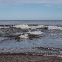 море волнуется два... :: Наталья Литвинчук