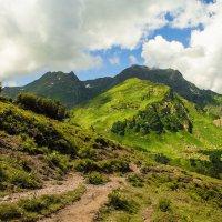 АБХАЗИЯ_гора Анчхо_перевал Пыв :: Андрей ЕВСЕЕВ