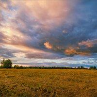 Осенняя, вечерняя... :: Александр Никитинский