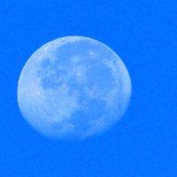Полная луна в апогее. :: Пётр Беркун