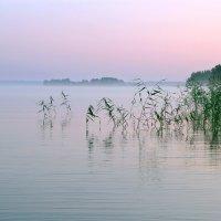 Рассвет на Ковжском озере. :: Николай Карандашев