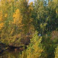 В тихий уголок пришла осень :: Екатерина Торганская