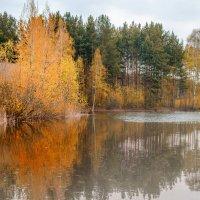 На озере... :: Кирилл Богомазов