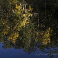 отражение на Сухом озере :: василиса косовская