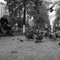 на скамейке :: Saloed Sidorov-Kassil