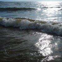 Финский залив :: Ольга Мореходова