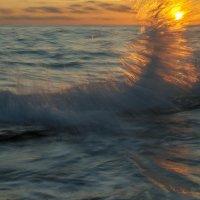 Крыло морского Ангела :: Евгений Khripp