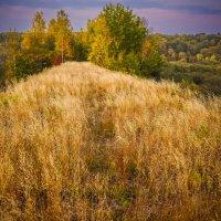Осень, старый мост! :: Ирина Антоновна
