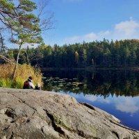 Осень в Tyresta :: Swetlana V