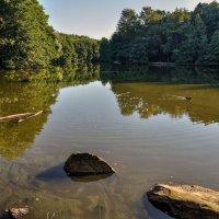 на озере :: igor