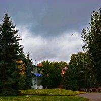 осень в городе :: Юрий