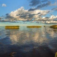 Юго-западный берег Ладожского озера. :: Фёдор. Лашков