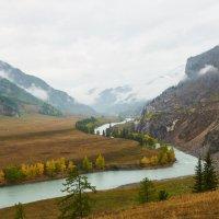 река Чуя :: Николай Мальцев