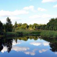 Озеро Балас :: Владимир Болдырев