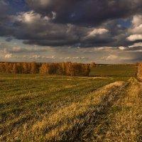 Зависли к горизонту облака :: Сергей Жуков