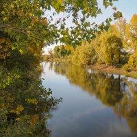 Золотая осень на реке Деме :: Сергей Тагиров