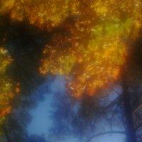 Осень...  сквозь  ресницы... :: Валерия  Полещикова