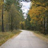 Дарога в осень :: Denis Valerevich