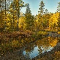 Уральская осень :: vladimir