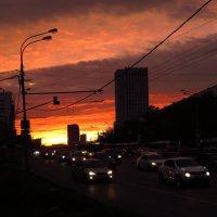Красное и черное :: Андрей Лукьянов