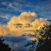 Облако с хитрым лицом :: Юрий Фёдоров