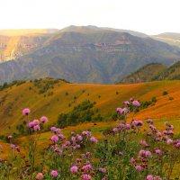 Осень в горах Приэльбрусья :: Vladimir 070549