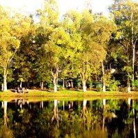 Отражение золотой осени :: Елена Семигина