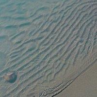 Почти морское побережье.. А на самом деле - Катунь) :: Lady Etoile